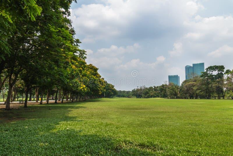 与树和云彩天空的风景 免版税库存照片