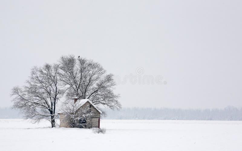 与树和房子的冬天风景 免版税库存图片
