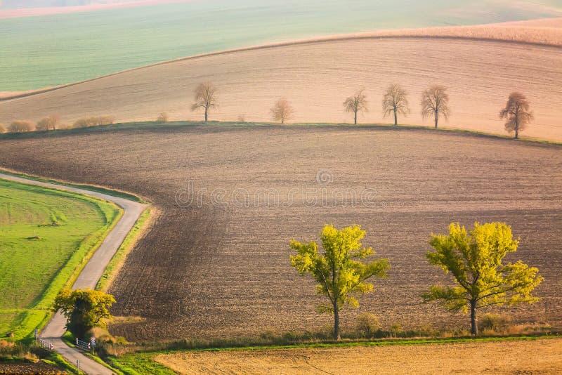 与树和路的南Moravian风景 波浪领域在捷克 捷克托斯卡纳 背景蓝色云彩调遣草绿色本质天空空白小束 免版税库存照片