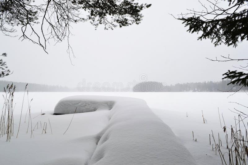 与树和雪的冬天风景 免版税库存照片