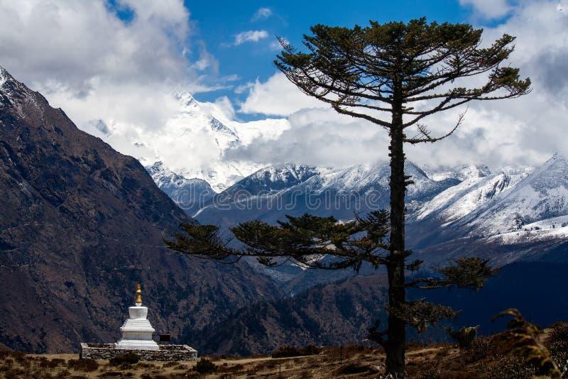 与树和stupa的喜马拉雅风景 图库摄影
