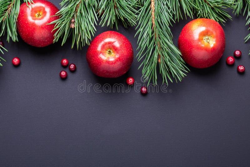 与树枝、红色苹果和蔓越桔的圣诞节背景 黑暗的木桌 免版税库存照片