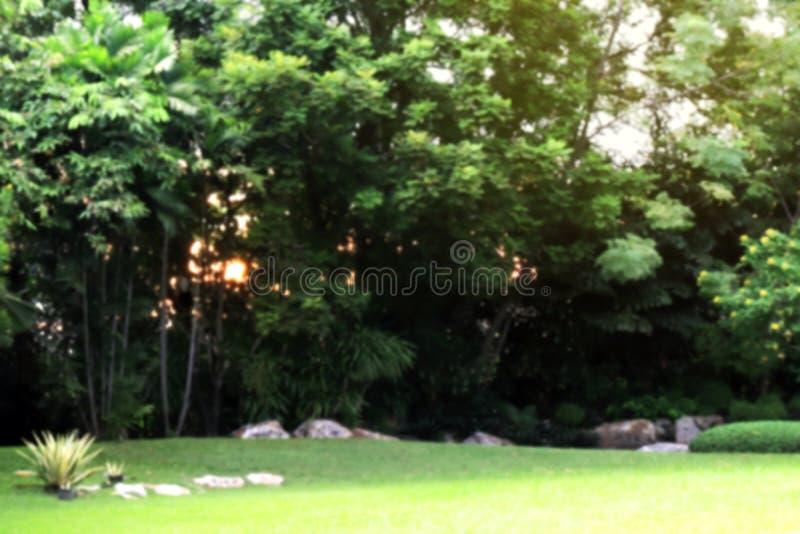 与树森林和草草坪的被弄脏的庭院公园背景在太阳轻的亮光,庭院公园草皮bokeh的图象下 免版税库存图片