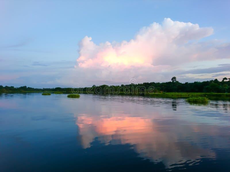 与树海边的多云天空 免版税库存图片