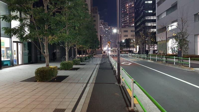 与树环境美化的行的街道视图  免版税库存照片