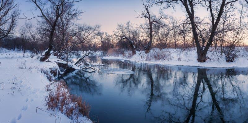 与树的全景冬天风景,美丽的结冰的河在 免版税库存照片