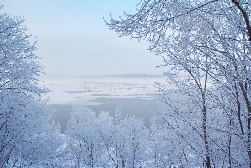 与树的冬天风景在河包括雪 库存照片