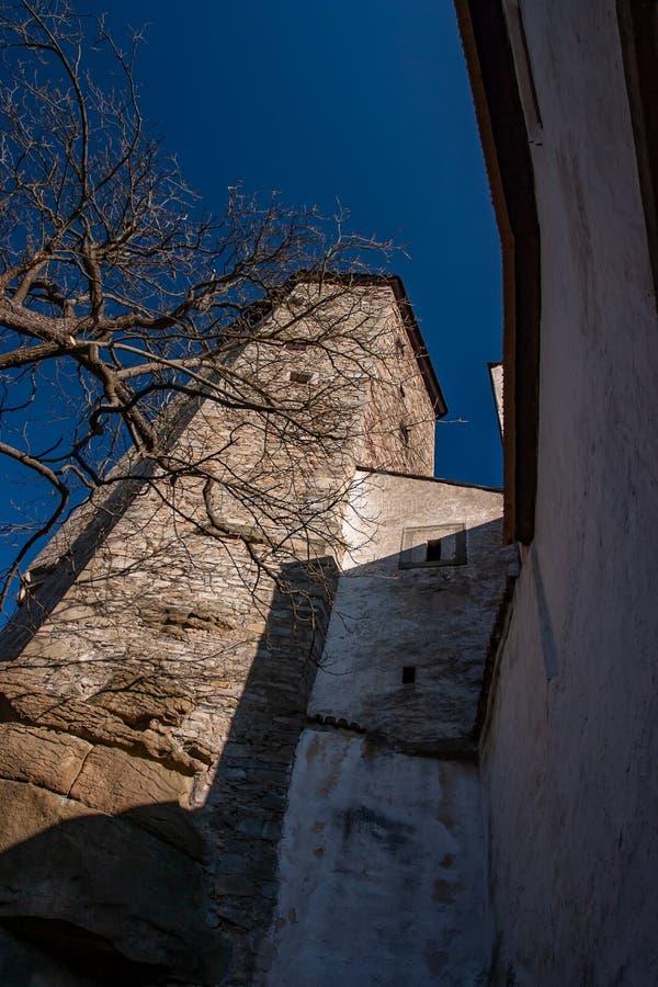 与树的老哥特式城堡,冬天 库存图片
