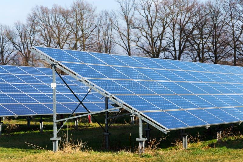与树的蓝色太阳电池板photovoltaics发电站在背景中 图库摄影