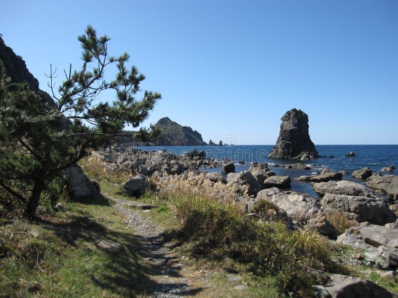 与树的路在与蓝色海水的日本岩石海岸 库存图片