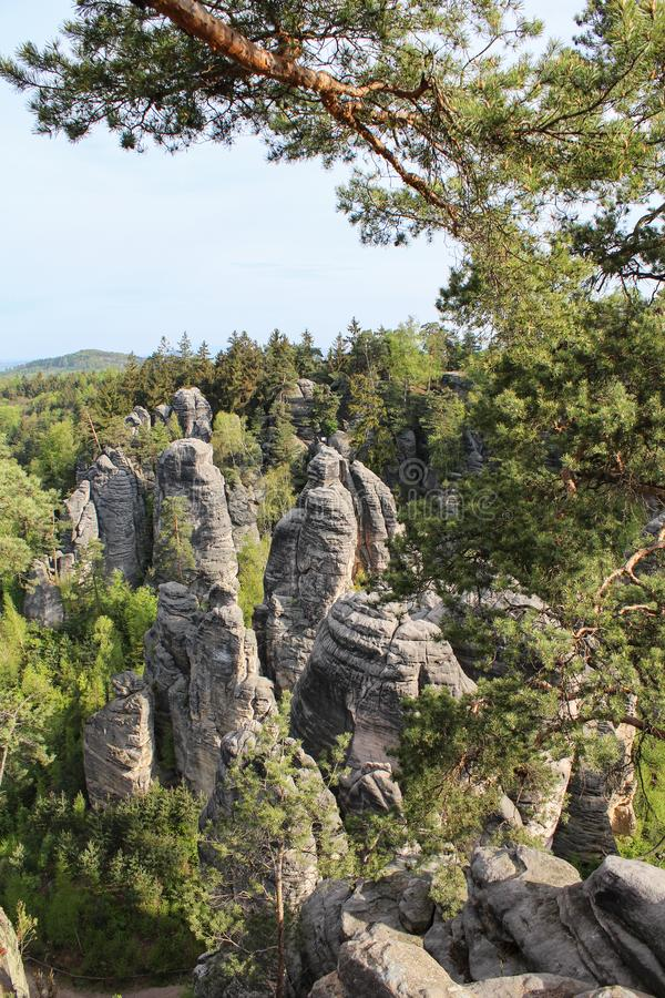 与树的Prachovske山临近村庄Prachov 捷克土地 库存照片