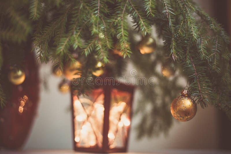 与树装饰和光的冷杉分支在灯笼 免版税库存图片