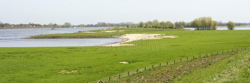 与树,洪泛区,绿草,水的典型的荷兰河风景在春天 免版税库存照片