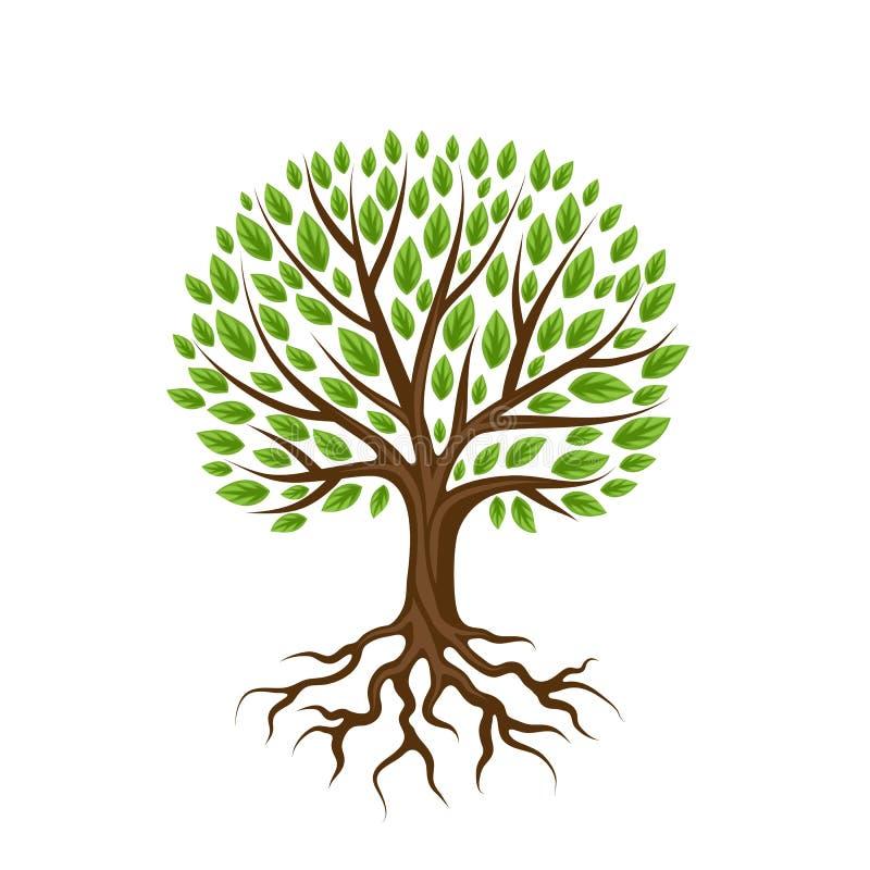 与根和叶子的抽象风格化树 自然例证 向量例证