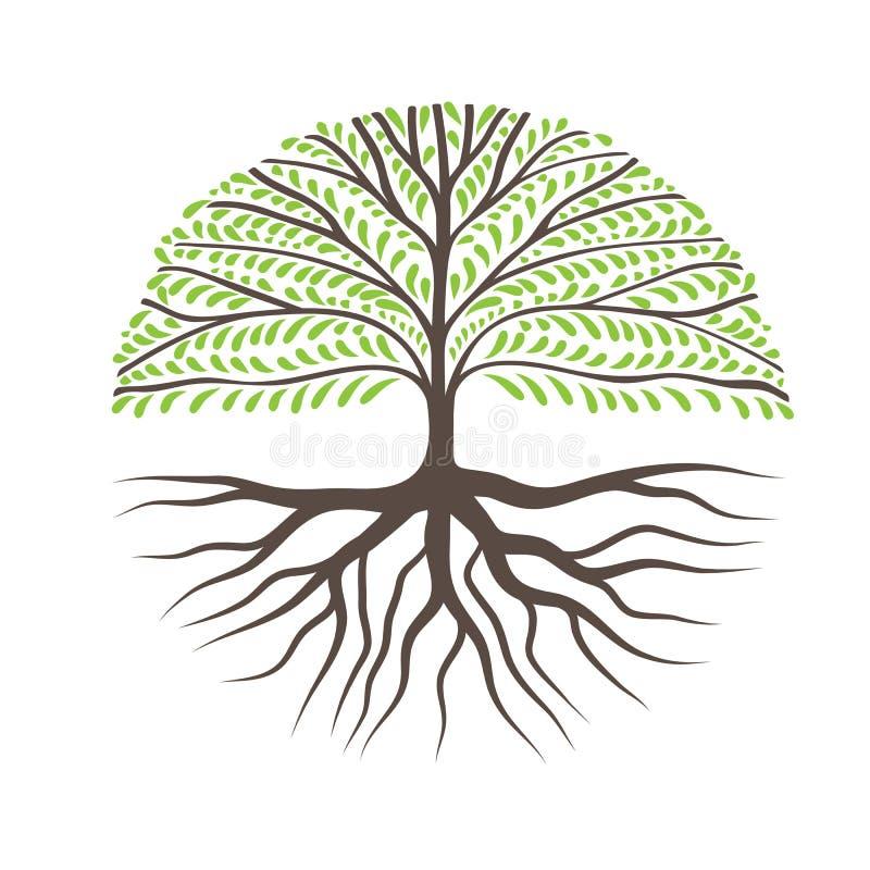 与根的圆的树 皇族释放例证