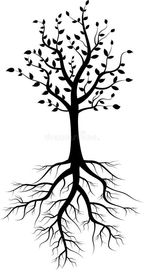 与根的树剪影 皇族释放例证