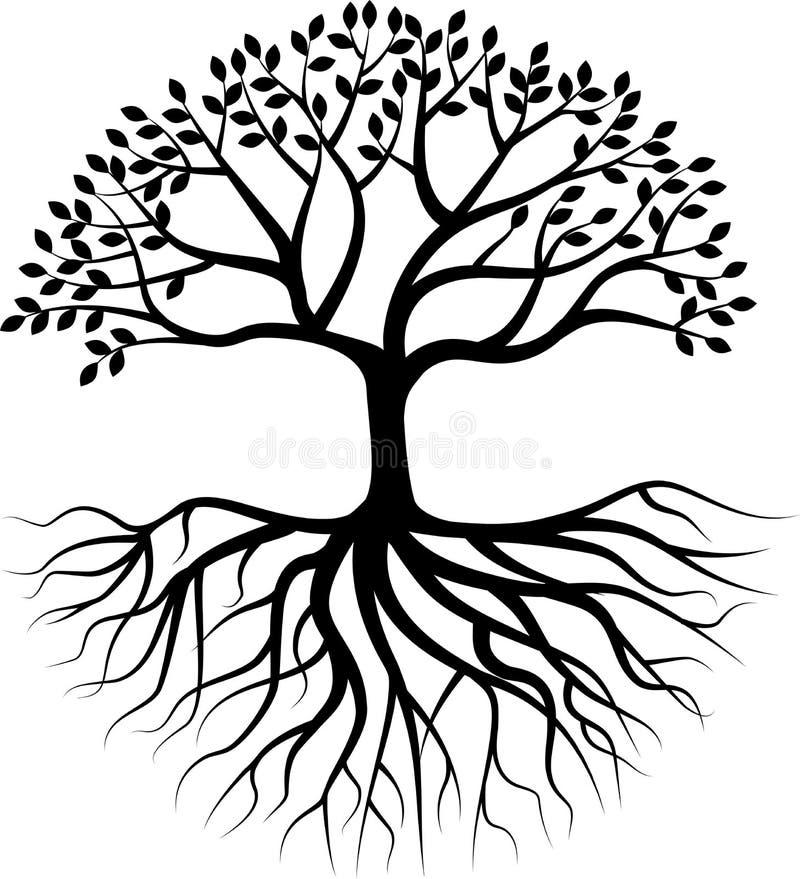 与根的树剪影 库存例证