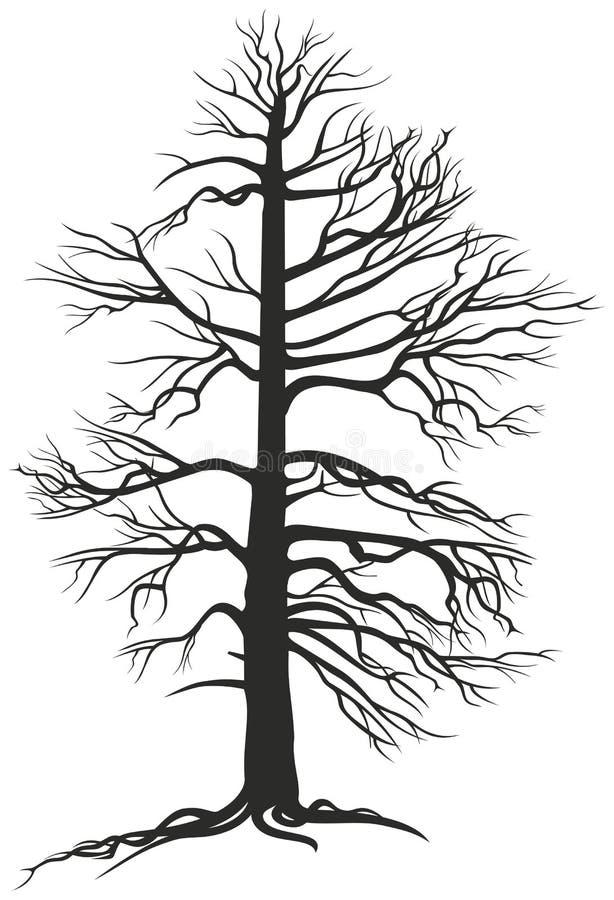 与根的黑色多枝结构树 皇族释放例证
