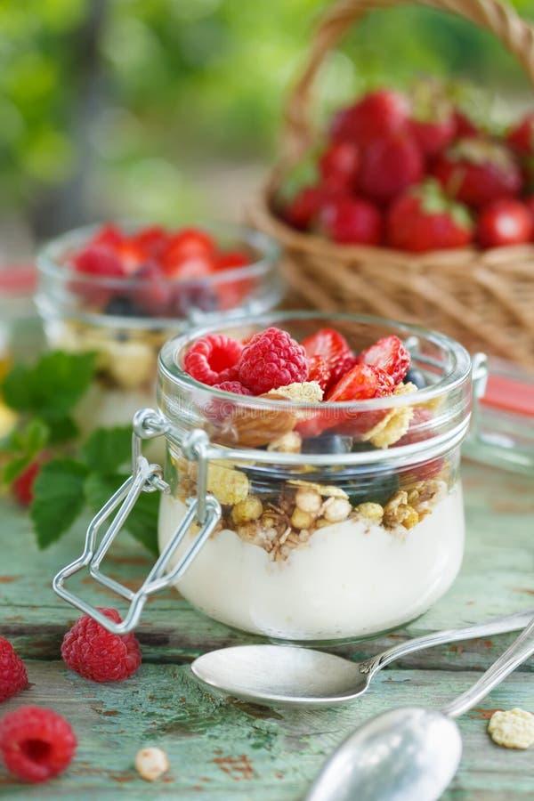 与格兰诺拉麦片和莓果的自创酸奶 库存照片