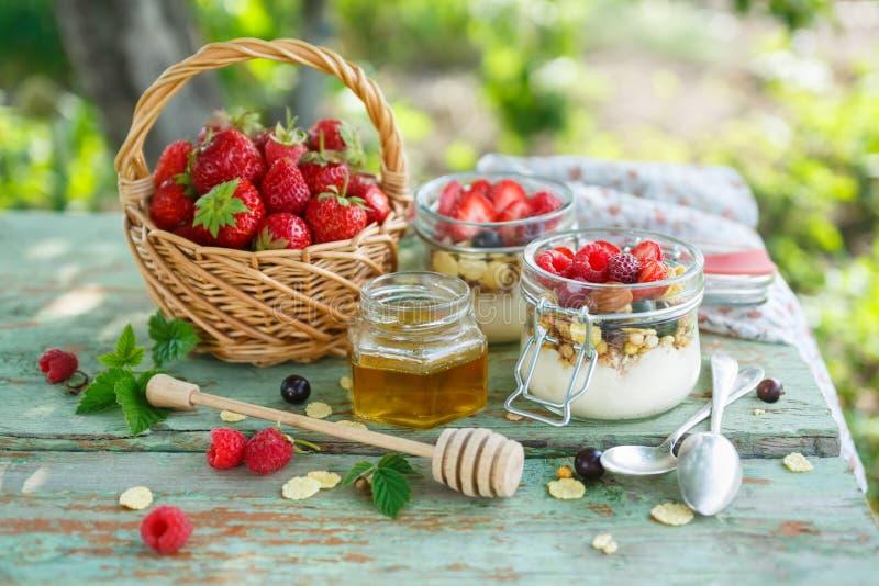 与格兰诺拉麦片和莓果的自创酸奶 免版税库存图片