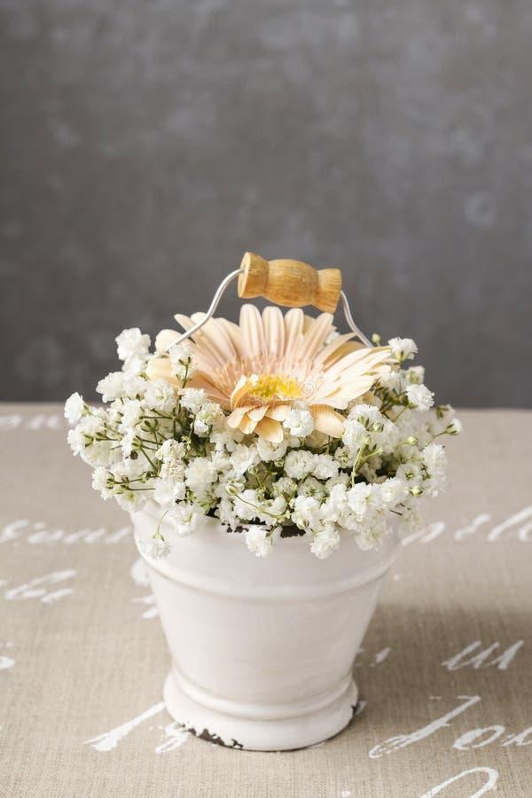 与桃子大丁草花和麦pani的植物布置 免版税库存图片