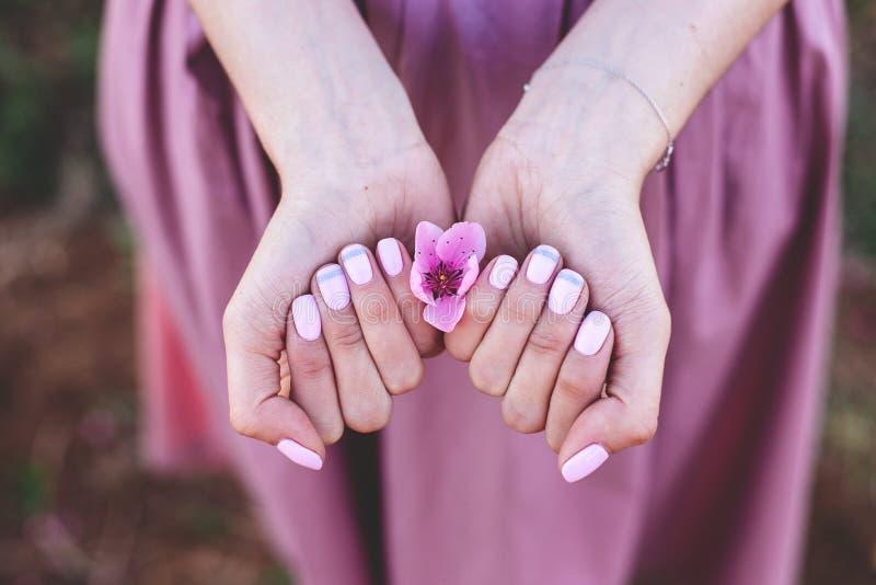 与桃子花的修指甲 免版税库存照片