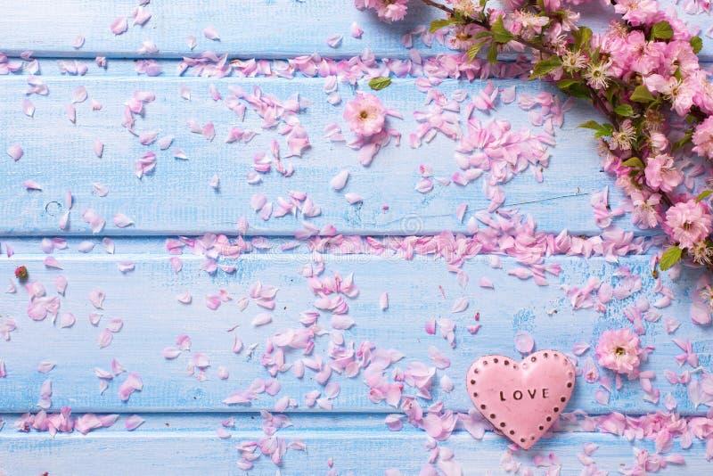 与桃红色佐仓花的背景和在蓝色的装饰心脏 库存图片