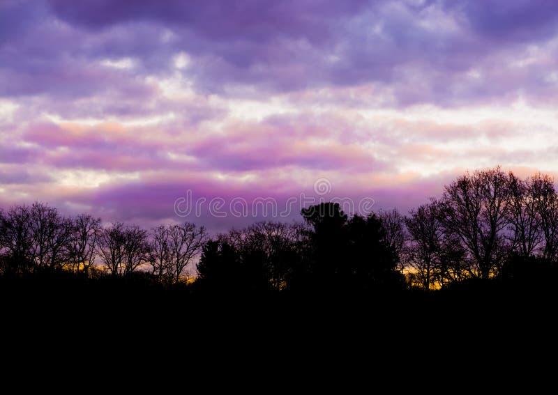 与桃红色和紫色真珠质云彩,在冬天很少发生的一个五颜六色的天空作用的森林风景 图库摄影