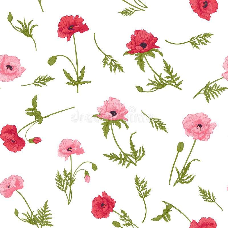 与桃红色和红色鸦片的无缝的样式开花 库存例证