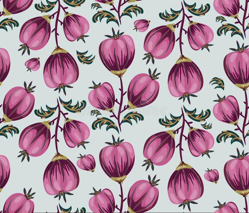 与桃红色圆的花的无缝的花卉背景在白色 韩 库存照片