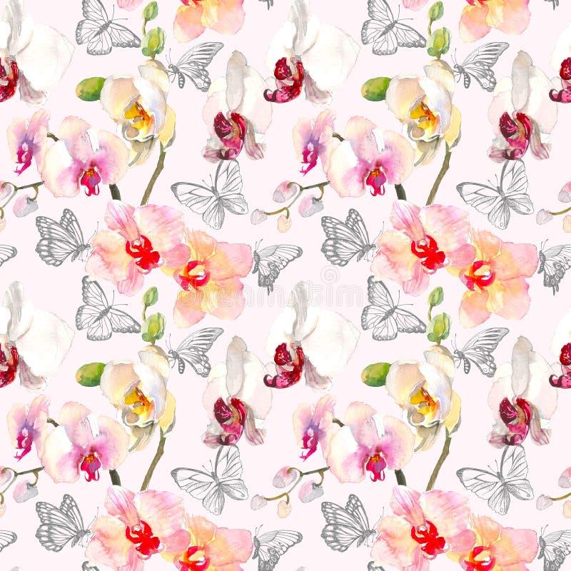 与桃红色橙色兰花的热带无缝的样式开花 在白色背景隔绝的热带花卉墙纸 异乎寻常 向量例证