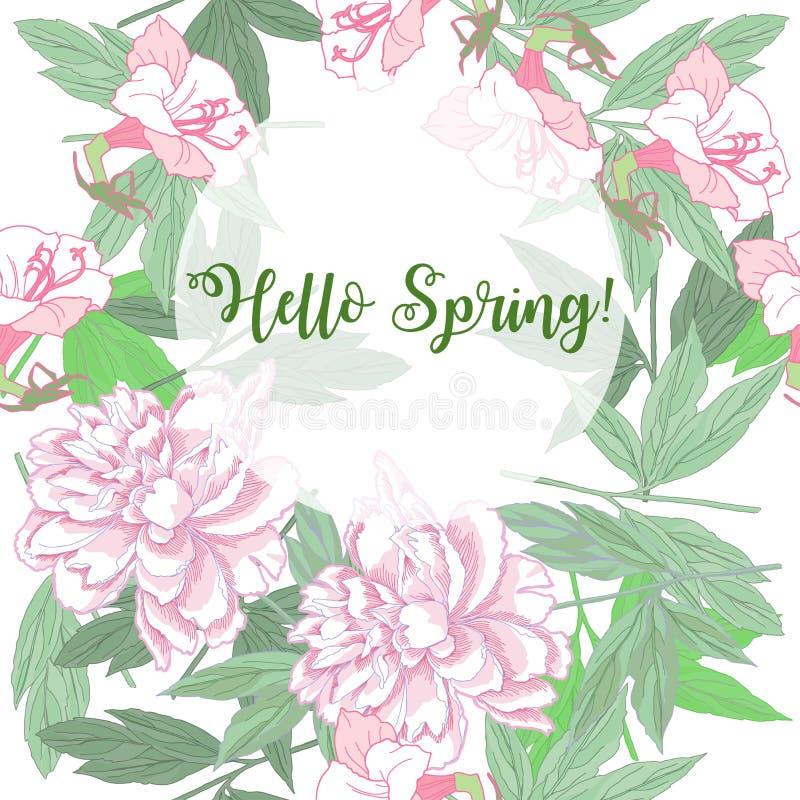 与桃红色牡丹和花的春天背景 皇族释放例证