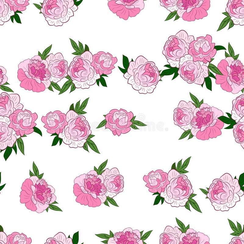 Download 与桃红色牡丹的无缝的样式 向量例证. 插画 包括有 对角, 玻色子, 背包, 蝴蝶花, 例证, 艺术, 植物群 - 62531573