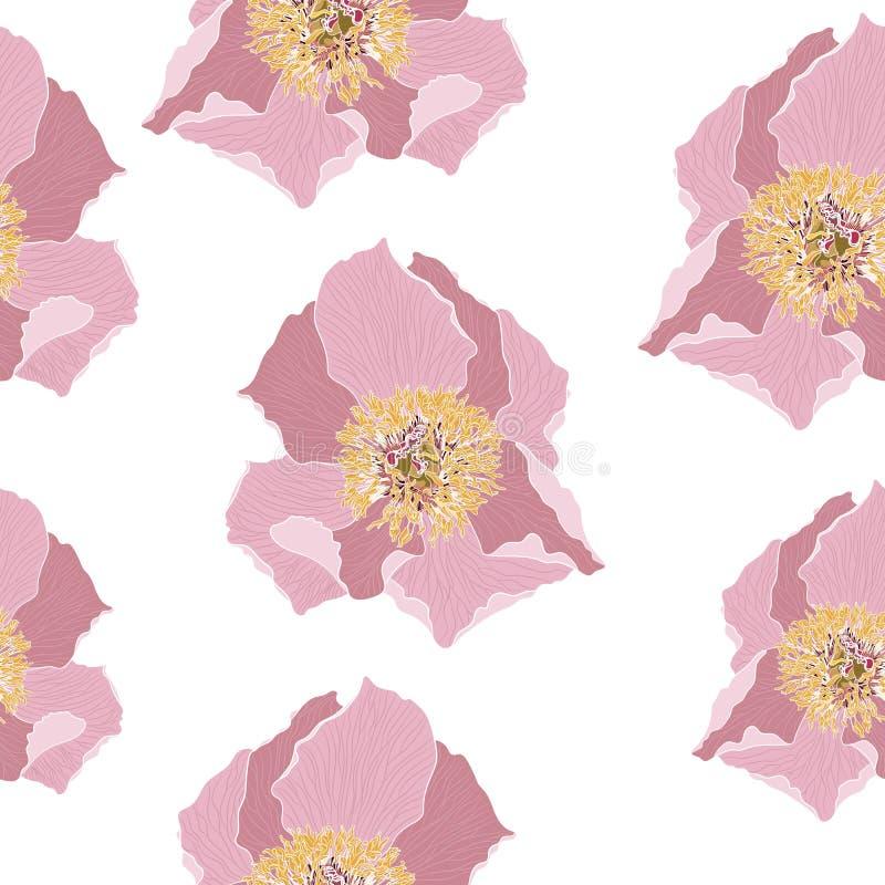 与桃红色牡丹花的逗人喜爱的花卉样式 无缝的纹理向量 时尚印刷品的典雅的模板 向量例证