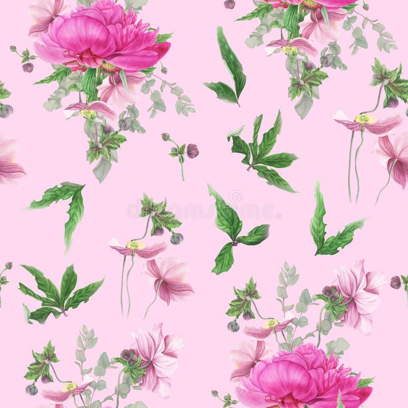 与桃红色牡丹,银莲花属,玉树的无缝的花卉样式 库存例证
