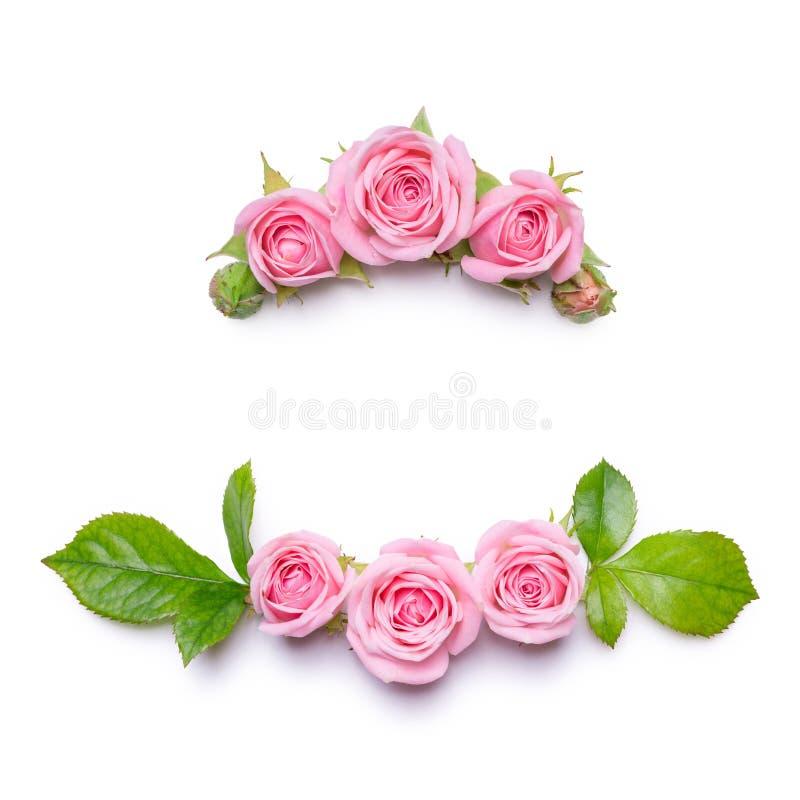 与桃红色玫瑰的花卉框架在白色背景 花边界 邀请卡片的样式 库存图片