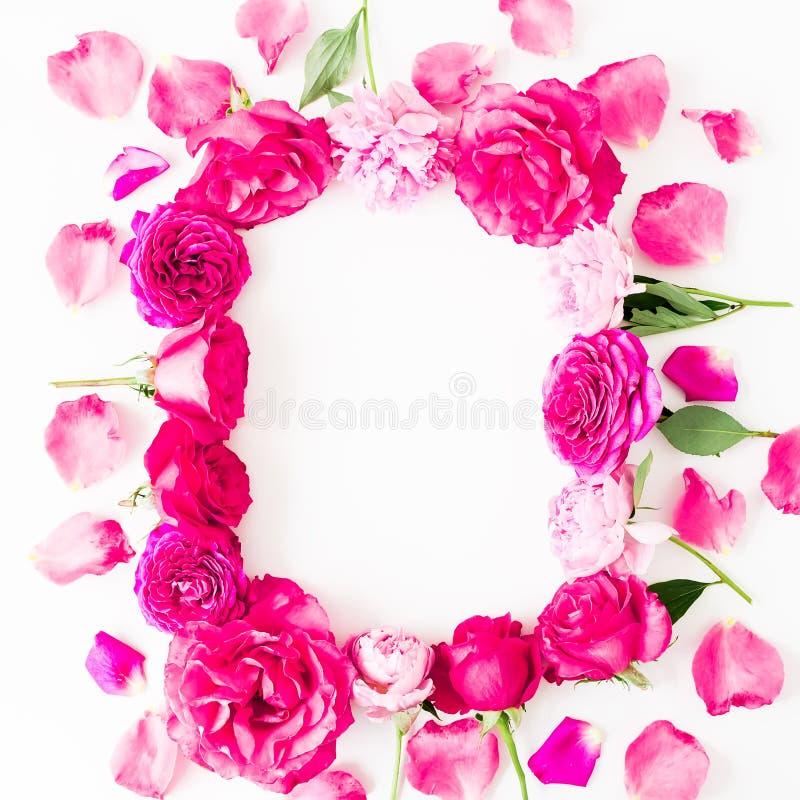 与桃红色玫瑰的花卉框架开花和在白色背景的瓣 平的位置,顶视图 花纹理 库存图片