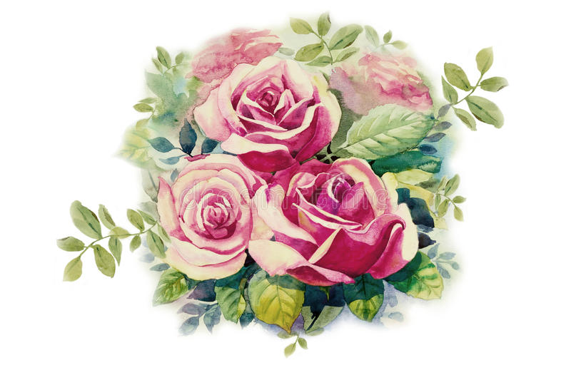 与桃红色玫瑰花的贺卡 库存例证