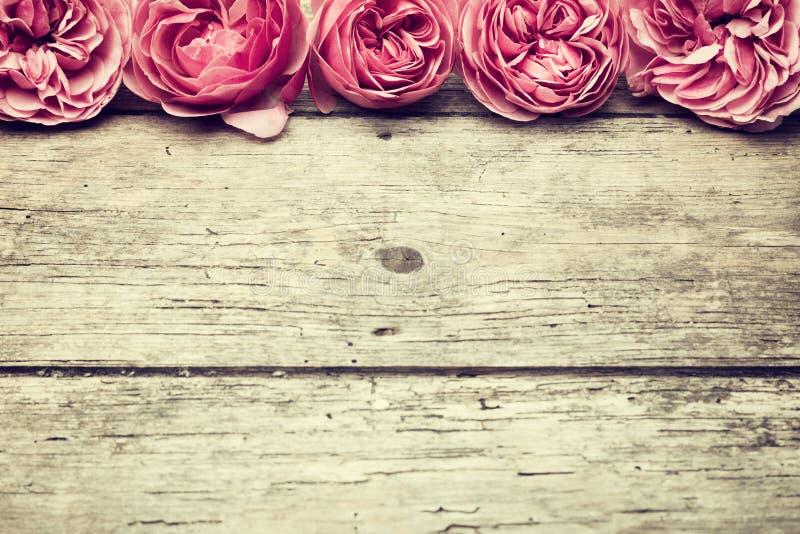 与桃红色玫瑰边界的葡萄酒背景 库存图片