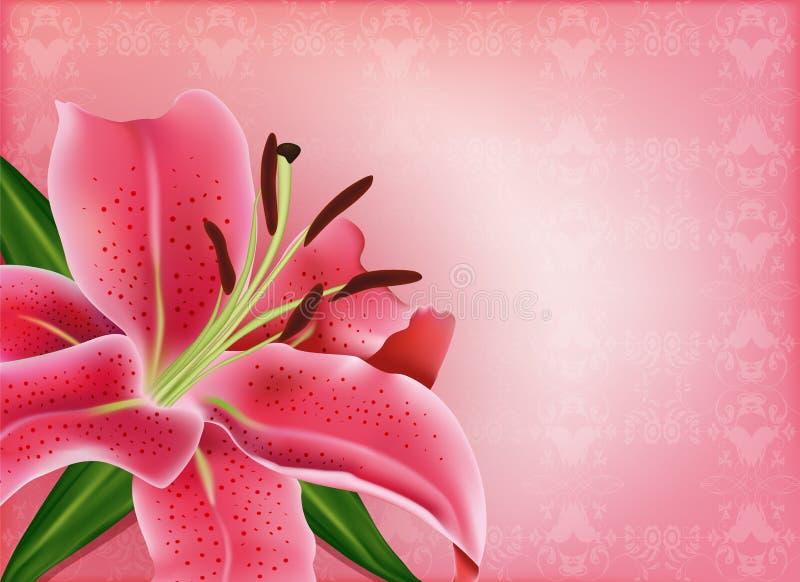 与桃红色百合的美丽的礼品券 向量例证
