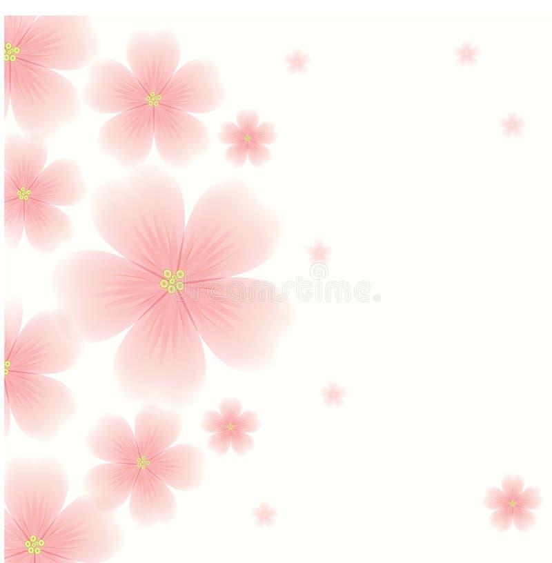 与桃红色花的背景 皇族释放例证