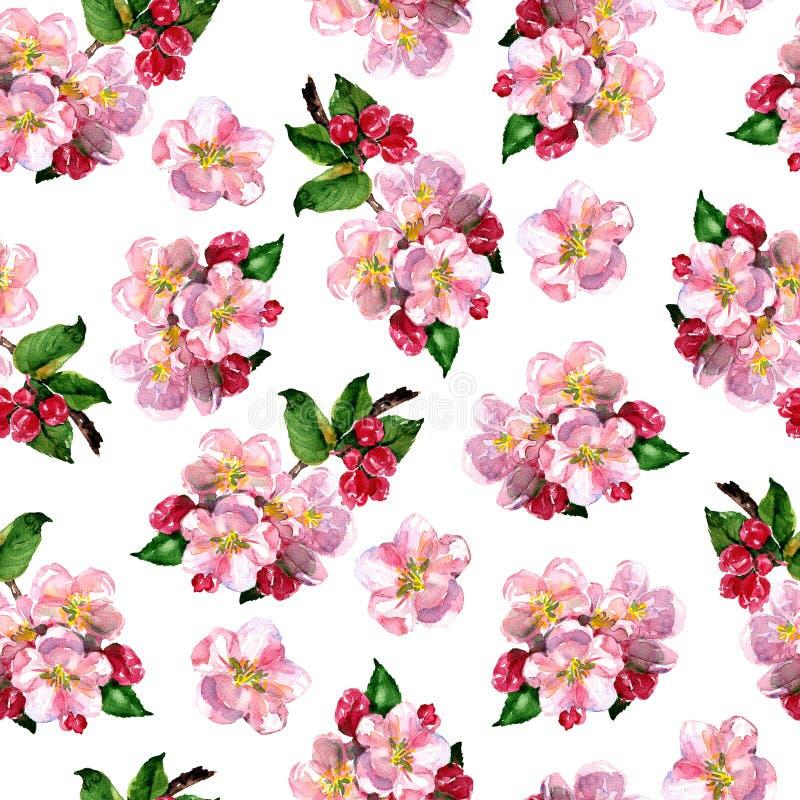 与桃红色苹果花的花卉无缝的样式分支,开花的花,高雅春天花卉样式,印刷品设计 库存例证