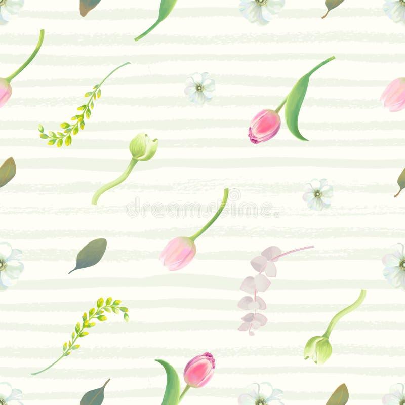 与桃红色郁金香、花蕾、开花和叶子的花卉无缝的样式反对淡绿色的油漆条纹 库存例证