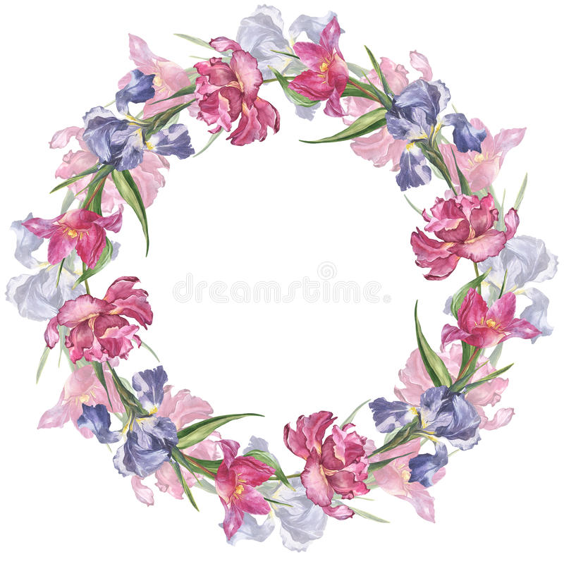 与桃红色郁金香和虹膜的水彩五颜六色的手工制造圆的框架开花 图库摄影