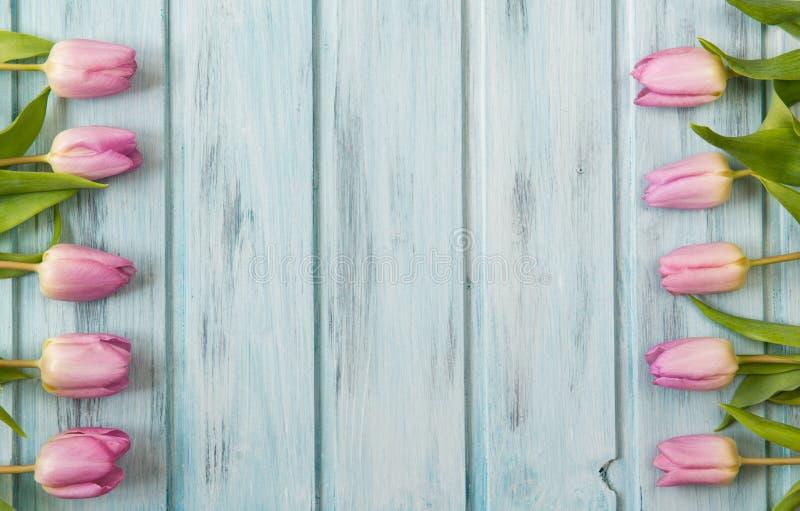 与桃红色郁金香花和木背景,拷贝空间的框架 库存图片