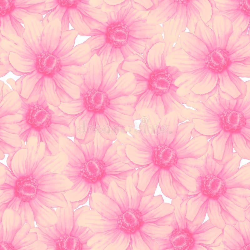 与桃红色银莲花属花的水彩五颜六色的样式在白色背景 手图画例证 向量例证
