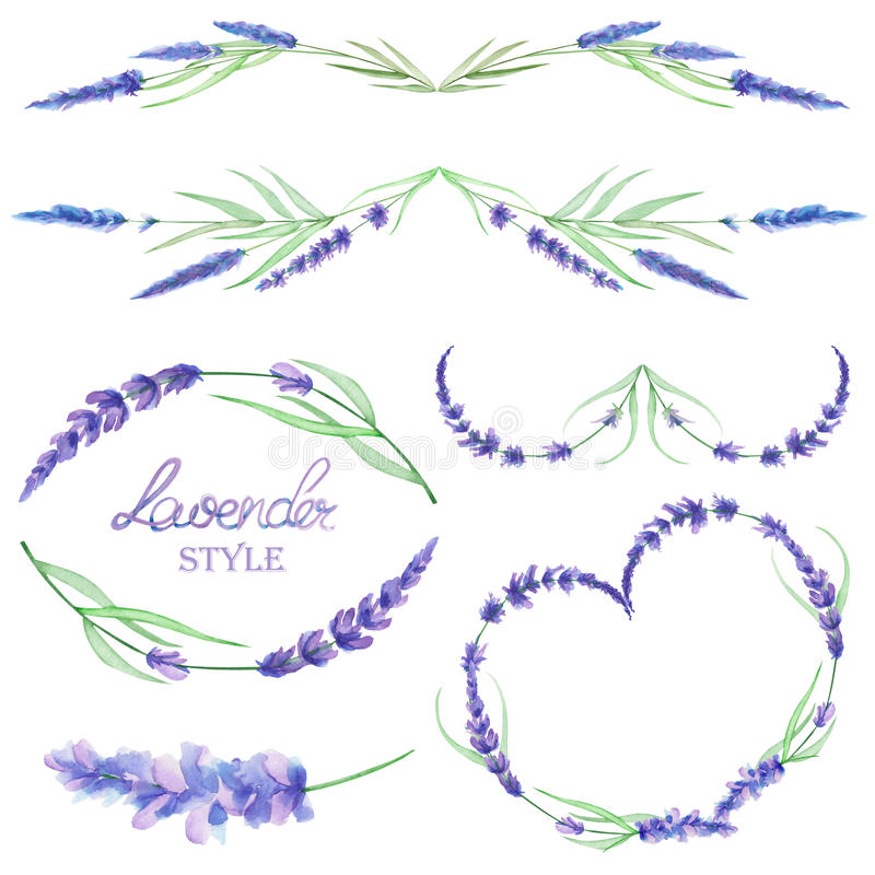 与框架边界的一个集合,花卉装饰装饰品用水彩淡紫色为婚礼或其他装饰开花 库存例证