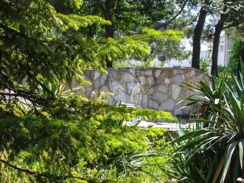 与桥梁的水池 免版税库存照片