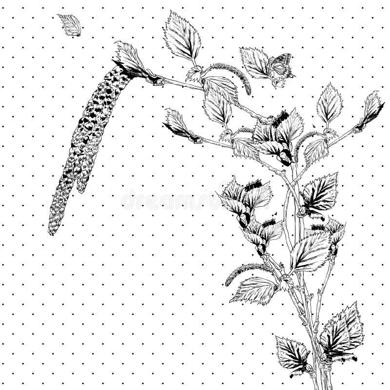 与桦树枝杈的葡萄酒单色背景 库存例证