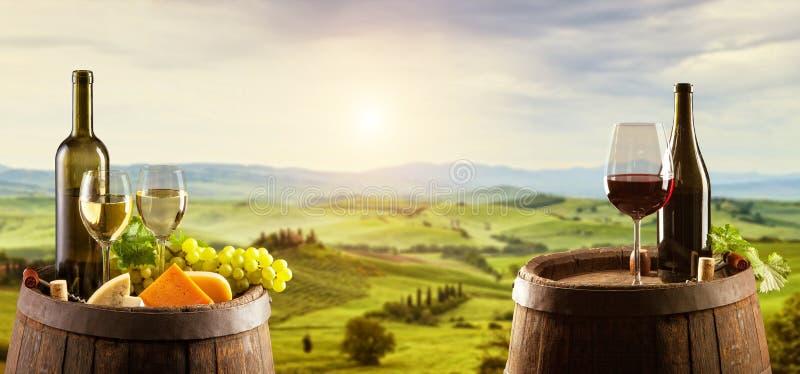 与桶的白色和红葡萄酒在葡萄园 免版税库存图片